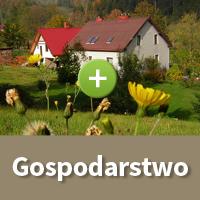 Gospodarstwo - Galeria W Dolinie Modrzewi - agroturystyka Rudawy Janowickie