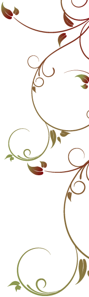 Dekoracja W Dolinie Modrzewi | Agroturystyka Rudawy Janowickie